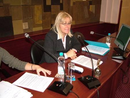 15.  sjednica Gradskog vijeća - Dorotea Pesic-Bukovac
