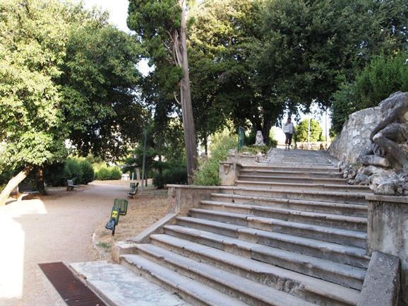 Park Nikole Hosta
