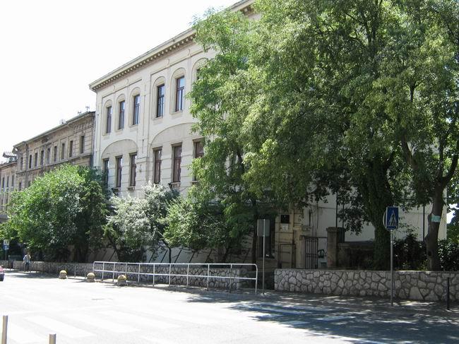 Osnovna škola-Scuola elementare Gelsi