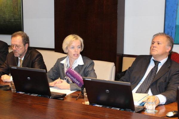 Ljiljana Buljan, 90. gradonačelnikov kolegij-siječanj 2013.