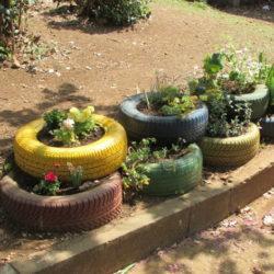 Dvorište oplemeljeno zelenilom