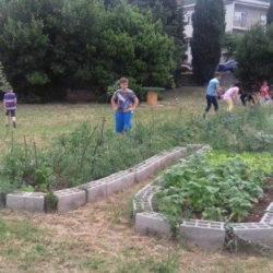 S otvorenja permakulturnog vrta