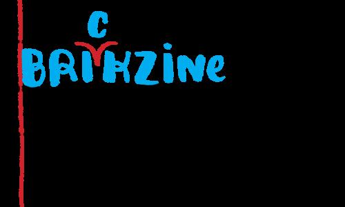 Brickzine vizual