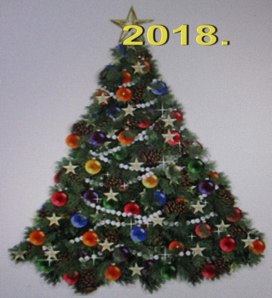 Bor za novogodišnje druženje