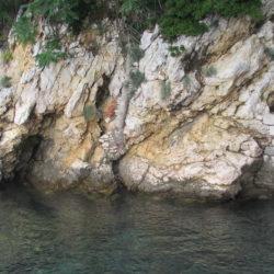 Obalna pećina
