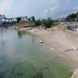 Plaža za pse Brajdica