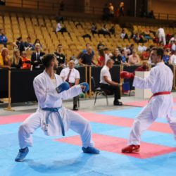 Međunarodni karate turnir