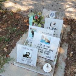 Vlasnici na groblju pokopali svoje omiljene ljubimce