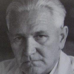 Selimir Dumengjić