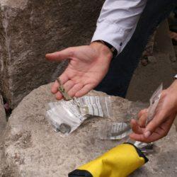 Principij - arheološka istraživanja