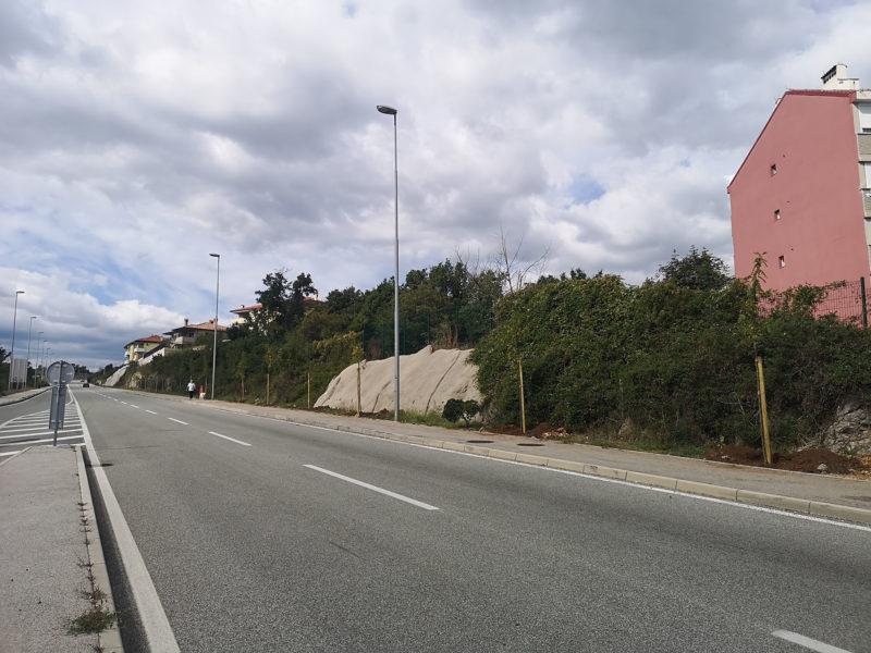 U sklopu Europskog tjedna mobilnosti zasađeno 20 stabala na novoj cesti na Rujevici