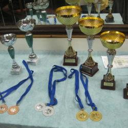 Pehari i medalje