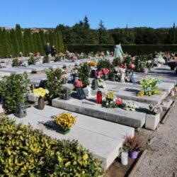 U postojećoj Aleji sahranjeno 180 hrvatskih branitelja