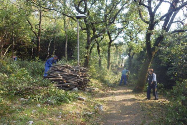Park lovora na Kantridi